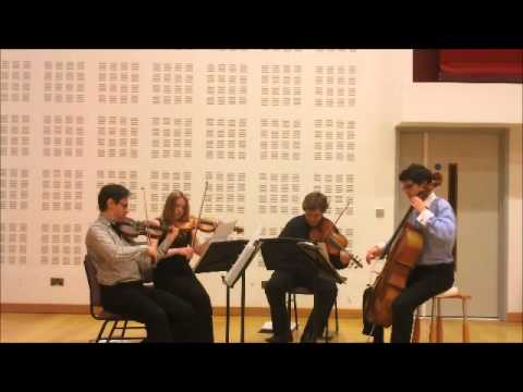 The Killers Mr Brightside played by the Endymion String Quartet - Manchester wedding string quartet