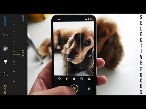 Get Portrait Mode iPhone XS Depth Control | Enhance Bokeh Effect Free on AppStore