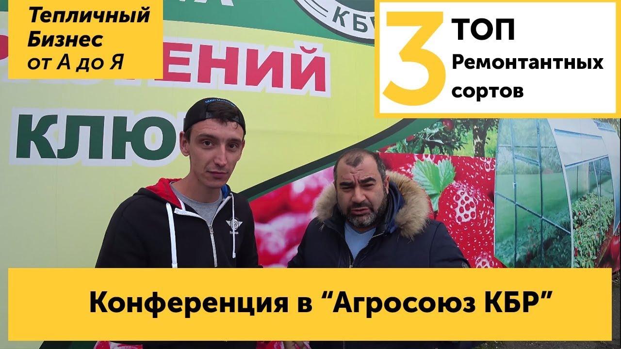 Клубничная конференция в Нарткале - Иван Малич отвечает на вопросы Агросоюза КБР