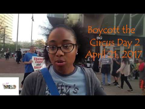 The Truth about Animal Activist - 8 Days of Boycotting the Ringling Brothers Circus