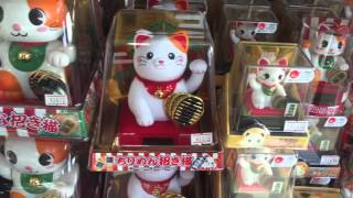 Lucky cat, electronic toy, Japanese, Japan