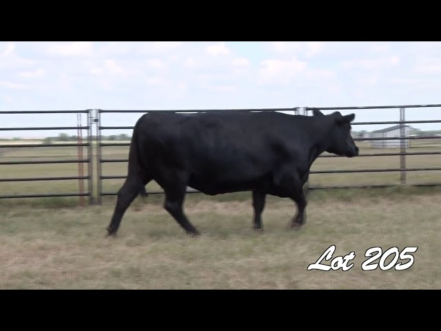 Pollard Farms Lot 205