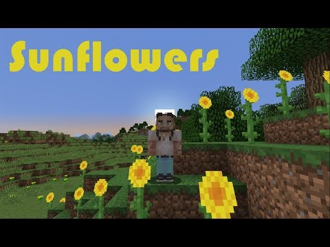Sunflower (By Post Malone) - A Minecraft Parody
