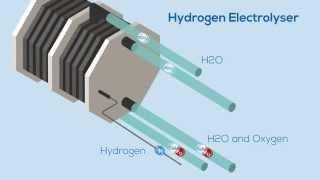 The Hydrogen Electrolyser