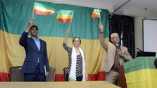 Ethiopia -- Eskinder Nega, Serkalem Fasil and Tamagn Beyene at a Town hall meeting in Alexandria, VA