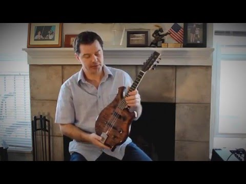 Solid Electric Mandolin