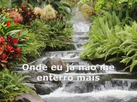 A PAZ - Gilberto Gil e Joao Donato - Mpb - a Nova