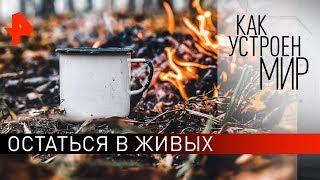 """Остаться в живых. """"Как устроен мир"""" с Тимофеем Баженовым (19.11.19)."""