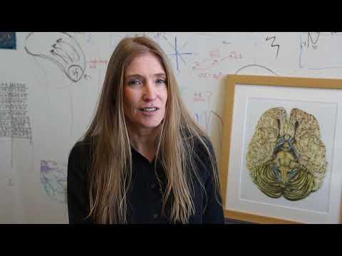 Mount Sinai Scholar: Daniela Schiller