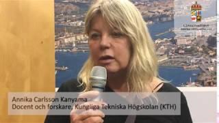 Intervju med Annika Karlsson Kanyama, docent och forskare på KTH, om robusta beslutsstödsmetoder