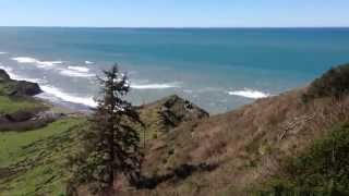 Coastal Springtime Beauty