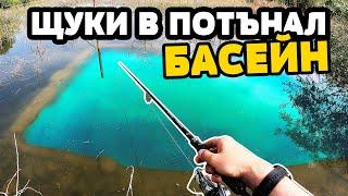 СКРИТ БАСЕЙН В ГЬОЛА Риболов на щука ЗМИЯ ИЗЯДЕ КАРАКУДА pike fishing