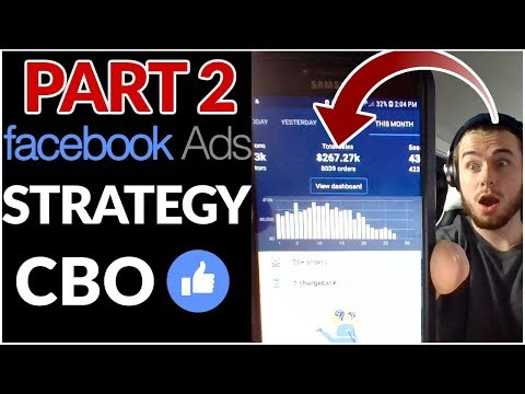 FB Ads CBO Testing Strategy - Part 2 | I Lost Money | Shopify Dropshipping 2019 thumbnail