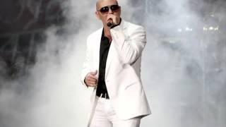Pitbull 1234