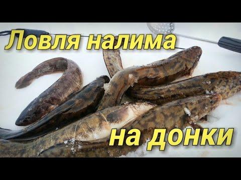 зимняя рыбалка на донную удочку