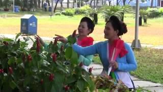Dương Xuân - Chèo cổ (Trường Phạm&Chanh Vũ)