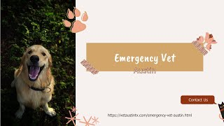 Emergency Vet Austin