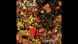 The Coral - 1000 Years