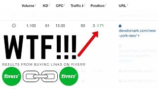 WTF! I Paid $500 For Backlinks On Fiverr For SEO Rankings [SHOCKING RESULTS]