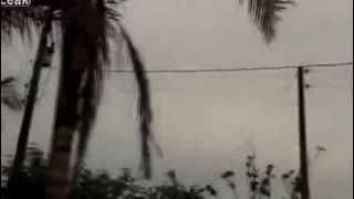 araignees geantes pleuvant du ciel bresilien.phenomene tres etranges..