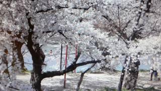 Golden 60er Musik aus Japan Shimakura Chiyoko Jinsei Iroiro