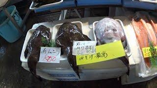 塩釜水産物仲卸市場(宮城県)