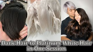 Dark Hair to Platinum White Hair in One Session