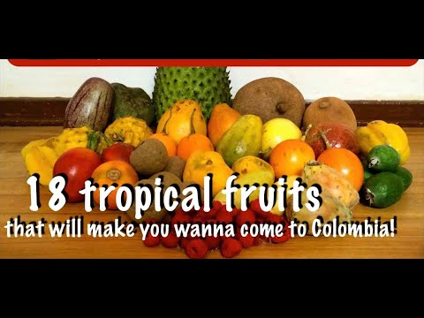 18 Tropical Fruits from COLOMBIA's Fruitarian Paradise
