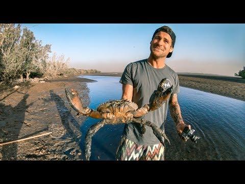 YBS Catch And Cook Ep 1 - MUDCRAB + One Of The World's Most Venomous Snakes