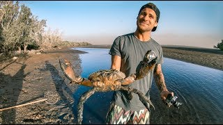 YBS Lifestyle Ep 1 - MONSTER MUDCRAB CATCH AND COOK | Sea Snake Encounter