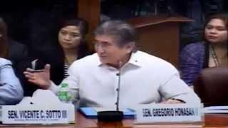 Gringo Honasan, JV Ejercito, SAF 44, Mamasapano, Senate, Investigation, February 12, 2015, 4/7