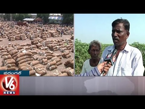 Cotton Farmers In Concern With Lack Of Minimum Support Price | Warangal | V6 News