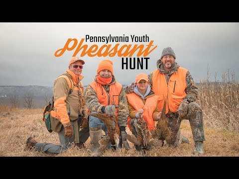 Pennsylvania Pheasant Hunting