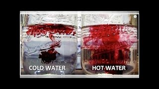 Cold Water Vs Warm Water: One of Them is Damaging to Your Health