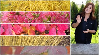 5 Shrubs that Deliver Huge FallColor! ❤️// Garden Answer