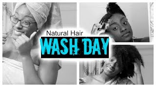 12 Step Wash Day | 4A-4C Natural Hair