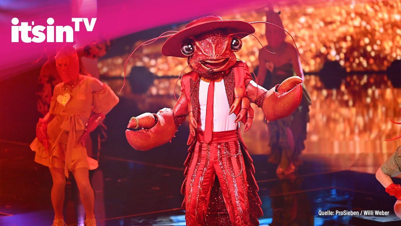 """Download """"The Masked Singer"""": DIESER Star steckte unter dem Hummer-Kostüm"""