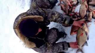 Рыбалка 11.04.2013. Белоярка.