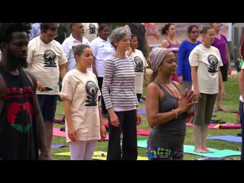 Consulate General of India, Houston. International Day of Yoga 2017 celebrations at Levy Park