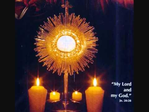 Holy Rasa - The Most High form of Holy Mass for Syro Malabar Catholic Church - Part 1.wmv