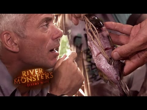 DANGEROUS Multi-Hook Fishing | HORROR STORY | River Monsters