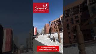 Стрижи ЖК «Онега» Новосибирск