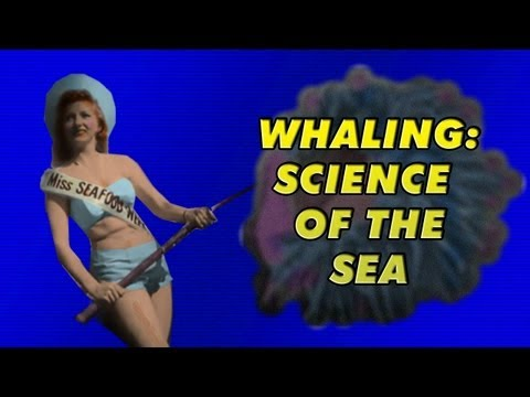 whaling - science from the sea