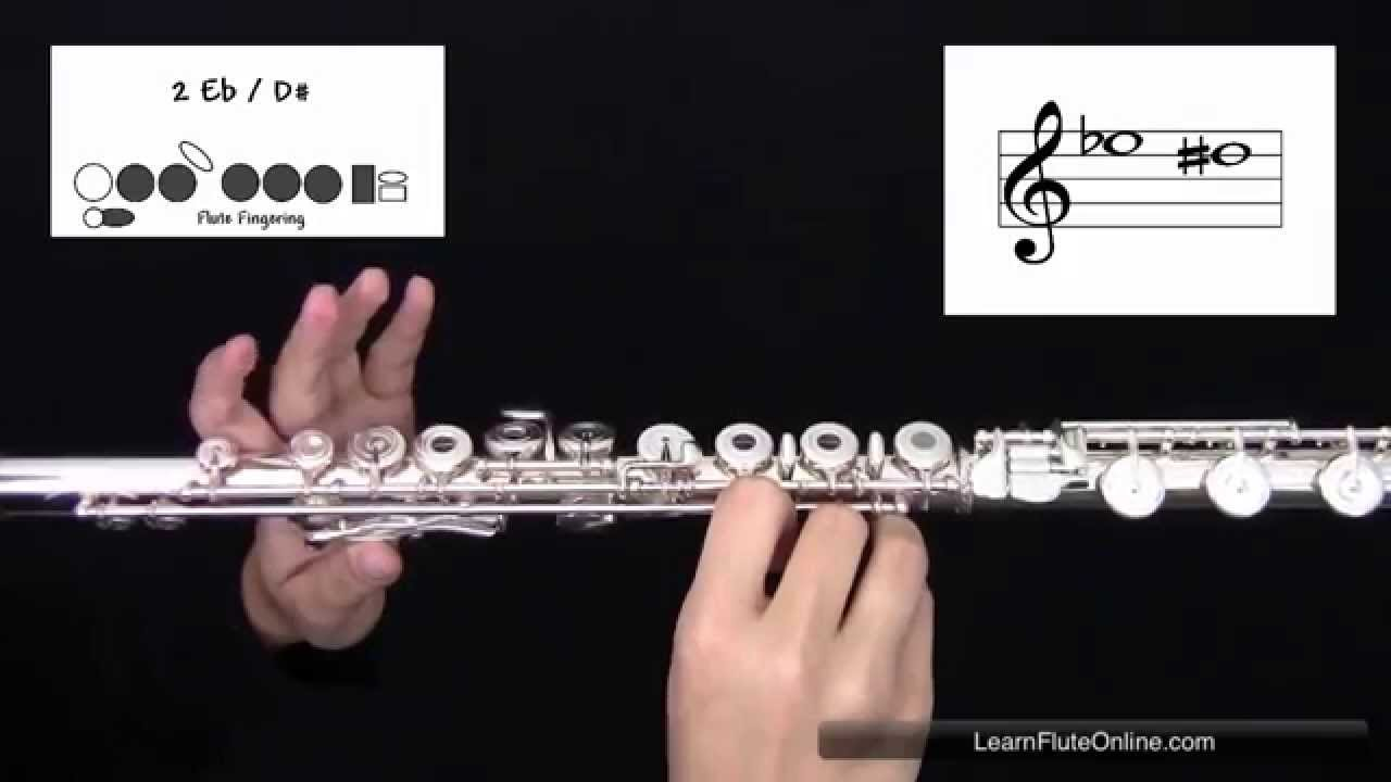 How To Play The Note E flat or D sharp Eb/D# on Flute: Learn Flute Online
