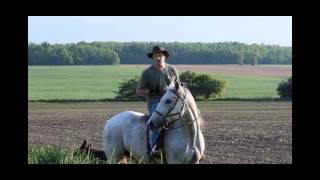 Crosshill Kennels - German Shepherd Dogs