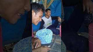 Download Video ngentot d saung MP3 3GP MP4
