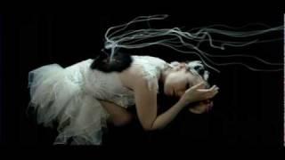 Björk - Unravel