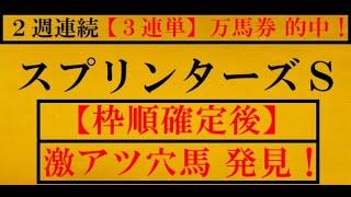 スプリンターズS2020【枠順確定後】激アツ穴馬 発見!(スプリンターズステークス2020)