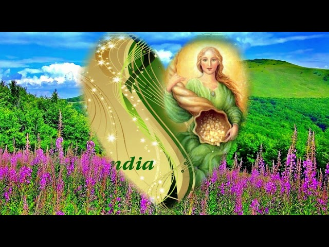 Abundia #1
