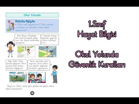 Okul Yolunda Güvenlik Kuralları 1.Sınıf Hayat Bilgisi Konu Anlatımı